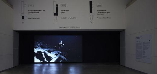 Giorgio Andreotta Calò Senza titolo (Jona), 2019 Veduta dell'installazione, Pirelli HangarBicocca, Milano, 2019. Commissionata e prodotta da Pirelli HangarBicocca. Courtesy dell'artista e Pirelli HangarBicocca. Foto: Agostino Osio