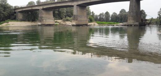 Pulisci e Corri Ponte Po Carmagnola fototrappole