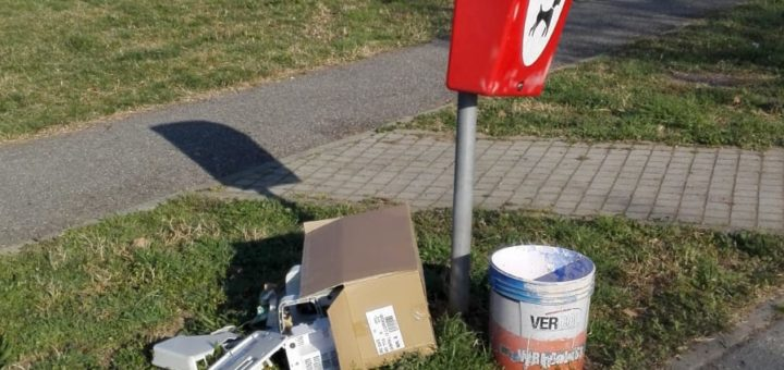 cartoline carignanesi rifiuti abbandonati marzo 2019