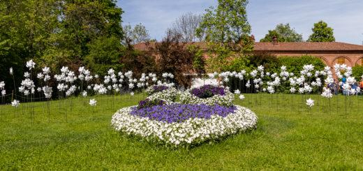 trionfo della primavera