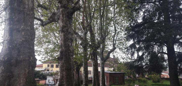 parco Castello di Moncalieri Giornata dedicata all'ambiente
