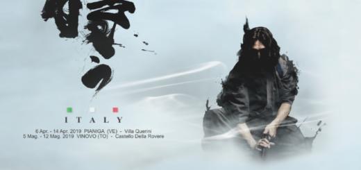 Mostra samurai a Vinovo