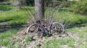 bando cicloturismo sostenibile