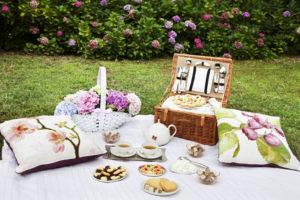 picnic Castello di Pralormo