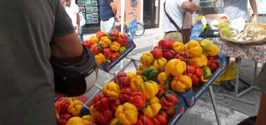 Fiera del Peperone Peperò Carmagnola Distretto del cibo chierese e carmagnolese