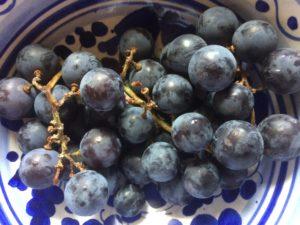 Uva fragola, l'estate nel piatto