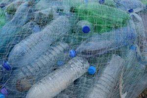 Carignano plastic free