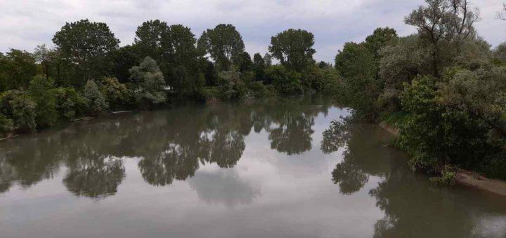 Po Le Riserve naturali tra Casalgrasso e Moncalieri