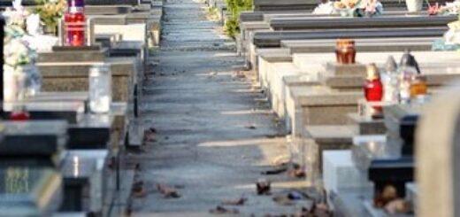 navetta per il cimitero